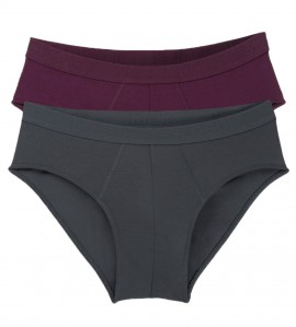 Lot de 2 slips midi homme EverNew V007 BORDEAUX GRIS